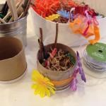 Springtime nest building